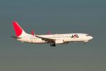 ポン太さんが、羽田空港で撮影したJALエクスプレス 737-846の航空フォト(写真)