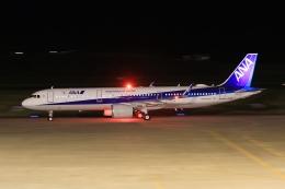 ぽんさんが、高松空港で撮影した全日空 A321-272Nの航空フォト(写真)