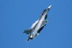 チャッピー・シミズさんが、三沢飛行場で撮影した航空自衛隊 F-2Bの航空フォト(写真)