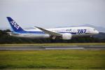 ピーチさんが、岡山空港で撮影した全日空 787-8 Dreamlinerの航空フォト(写真)