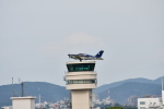 ja0hleさんが、名古屋飛行場で撮影した日本法人所有 TB-21 Trinidad TCの航空フォト(写真)