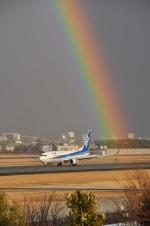 ベルーガさんが、伊丹空港で撮影した全日空 737-881の航空フォト(写真)