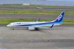 md11jbirdさんが、中部国際空港で撮影した全日空 737-881の航空フォト(写真)