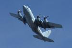 yabyanさんが、岐阜基地で撮影した航空自衛隊 C-130H Herculesの航空フォト(写真)