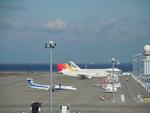 はみんぐばーどさんが、中部国際空港で撮影した日本航空 A300B4-622Rの航空フォト(写真)
