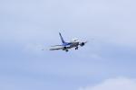 JA946さんが、伊丹空港で撮影したANAウイングス 737-54Kの航空フォト(写真)