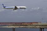 senyoさんが、羽田空港で撮影した全日空 777-381の航空フォト(写真)
