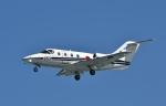 ja0hleさんが、岐阜基地で撮影した航空自衛隊 T-400の航空フォト(写真)