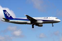RJBB Spotterさんが、熊本空港で撮影した全日空 A320-211の航空フォト(写真)