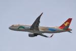 tecasoさんが、関西国際空港で撮影した天津航空 A320-214の航空フォト(写真)