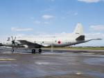 Mame @ TYOさんが、三沢飛行場で撮影した海上自衛隊 P-3Cの航空フォト(写真)