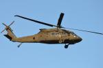 350JMさんが、厚木飛行場で撮影したアメリカ陸軍 UH-60M Black Hawk (S-70A) の航空フォト(写真)