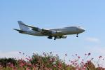anyongさんが、成田国際空港で撮影したアトラス航空 747-47UF/SCDの航空フォト(写真)