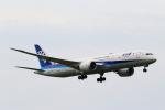 こだしさんが、成田国際空港で撮影した全日空 787-9の航空フォト(写真)