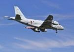 mahiちゃんさんが、厚木飛行場で撮影した海上自衛隊 P-1の航空フォト(写真)