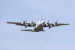 masannoriさんが、厚木飛行場で撮影した海上自衛隊 C-130Rの航空フォト(写真)