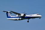 hirohiro77さんが、新千歳空港で撮影したANAウイングス DHC-8-402Q Dash 8の航空フォト(写真)