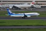 やつはしさんが、羽田空港で撮影した全日空 737-881の航空フォト(写真)