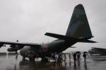 木人さんが、横田基地で撮影した航空自衛隊 C-130H Herculesの航空フォト(写真)