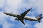 takaRJNSさんが、横田基地で撮影したユナイテッド航空 737-824の航空フォト(写真)