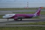 いっとくさんが、関西国際空港で撮影したピーチ A320-214の航空フォト(写真)
