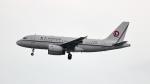 誘喜さんが、香港国際空港で撮影した恆大地產 A319-133CJの航空フォト(写真)