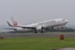 ワイエスさんが、出雲空港で撮影した日本航空 737-846の航空フォト(写真)