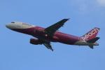 みるぽんたさんが、関西国際空港で撮影したピーチ A320-214の航空フォト(写真)