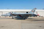 Tomo-Papaさんが、オシアナ海軍航空基地アポロソーセックフィールドで撮影したアメリカ海軍 F/A-18E Super Hornetの航空フォト(写真)