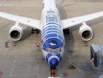 White Pelicanさんが、羽田空港で撮影した全日空 787-9の航空フォト(写真)