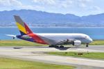 kix-boobyさんが、関西国際空港で撮影したアシアナ航空 A380-841の航空フォト(写真)