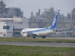 リンダさんが、松山空港で撮影した全日空 737-881の航空フォト(写真)