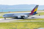 きゅうさんが、関西国際空港で撮影したアシアナ航空 A380-841の航空フォト(写真)