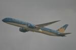 amagoさんが、香港国際空港で撮影したベトナム航空 787-9の航空フォト(写真)