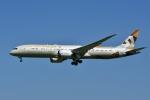 よしポンさんが、成田国際空港で撮影したエティハド航空 787-9の航空フォト(写真)