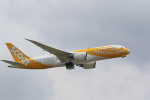 OS52さんが、成田国際空港で撮影したスクート 787-8 Dreamlinerの航空フォト(写真)