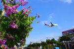 まいけるさんが、スワンナプーム国際空港で撮影したタイ国際航空 747-4D7の航空フォト(写真)