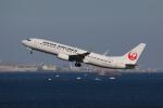 やつはしさんが、羽田空港で撮影した日本航空 737-846の航空フォト(写真)
