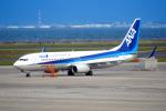 TAISEIさんが、中部国際空港で撮影した全日空 737-881の航空フォト(写真)