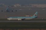 しかばねさんが、仁川国際空港で撮影した大韓航空 737-9B5の航空フォト(写真)