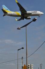 fortnumさんが、新千歳空港で撮影したAIR DO 737-781の航空フォト(写真)