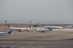 フレッシュマリオさんが、羽田空港で撮影した日本航空 A300B4-622Rの航空フォト(写真)
