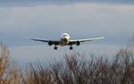 akihito114さんが、伊丹空港で撮影した全日空 747-481の航空フォト(写真)