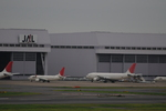 はみんぐばーどさんが、羽田空港で撮影した日本航空 A300B4-622Rの航空フォト(写真)