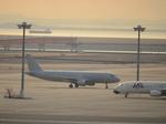 JA8094さんが、羽田空港で撮影した全日空 A320-211の航空フォト(写真)