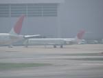 aoiaさんが、羽田空港で撮影した日本航空 MD-90-30の航空フォト(写真)