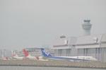hareotokoさんが、羽田空港で撮影した全日空 747-481(D)の航空フォト(写真)
