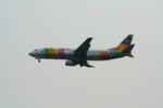 かみじょー。さんが、羽田空港で撮影したスカイネットアジア航空 737-4H6の航空フォト(写真)