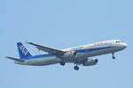 かみじょー。さんが、羽田空港で撮影した全日空 A321-131の航空フォト(写真)