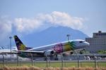 こーせー。さんが、鹿児島空港で撮影したソラシド エア 737-4M0の航空フォト(写真)